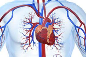 mascate-ucigas-tacut-hipertensiune-arteriala
